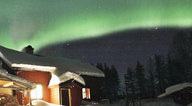 Vivez un séjour chien de traîneau en Suède et faites le plein d'activités nature