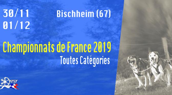 Résultats des championnats de France🇫🇷 de dryland (courses de chiens sur terre) 2019