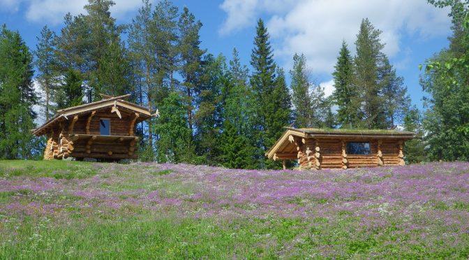 POSTE COMBLÉ – Laponie Suédoise : cherche handleur ou personne interessée pour une reprise d'activité