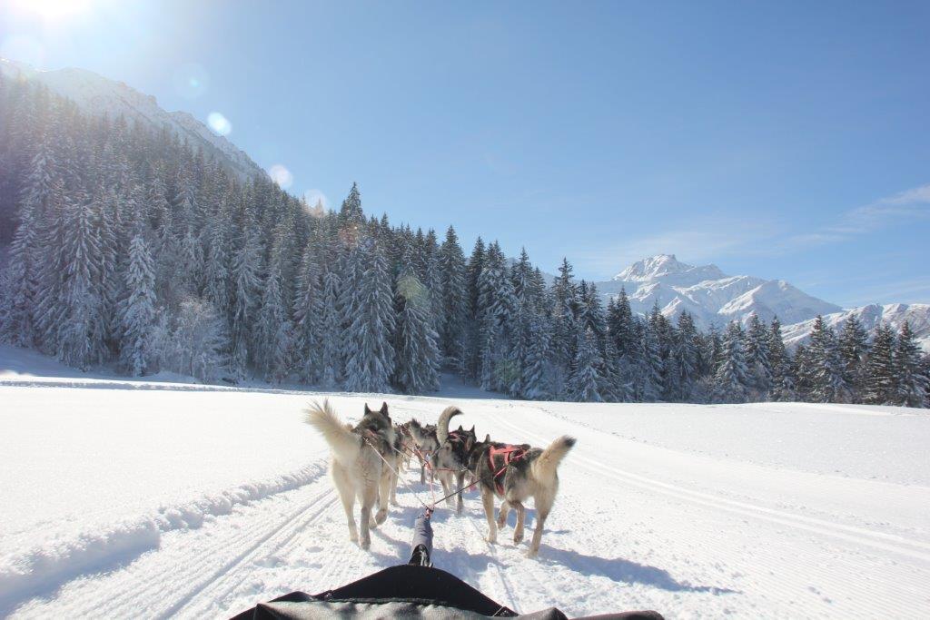 Escapades nordiques recrute des mushers en Savoie